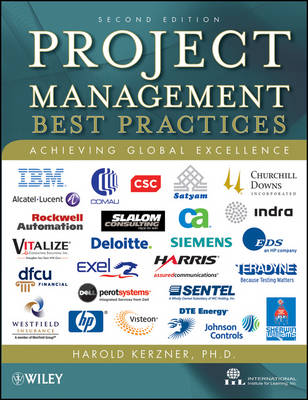 Project Management: Best Practices: Achieving Global Excellence (Hardback)