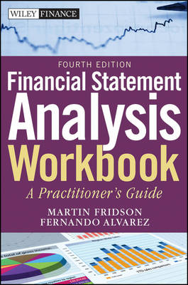 Financial Statement Analysis Workbook: A Practitioner's Guide - Wiley Finance (Paperback)