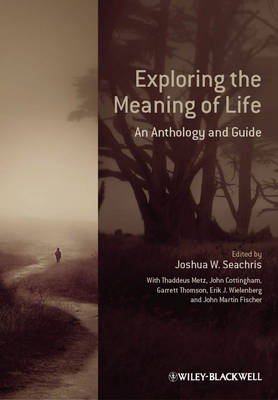 Exploring the Meaning of Life: An Anthology and Guide (Hardback)