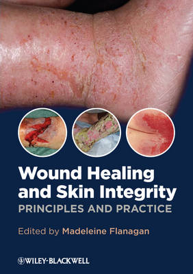 Wound Healing and Skin Integrity: Principles and Practice (Paperback)