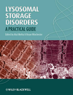 Lysosomal Storage Disorders: A Practical Guide (Paperback)