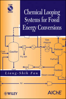 Chemical Looping Systems for Fossil Energy Conversions (Hardback)