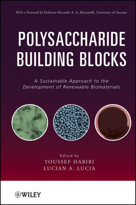 Polysaccharide Building Blocks: A Sustainable Approach to the Development of Renewable Biomaterials (Hardback)