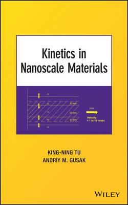 Kinetics in Nanoscale Materials (Hardback)