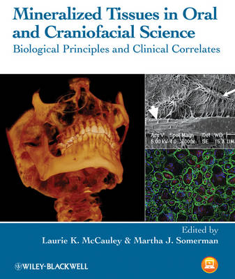 Mineralized Tissues in Oral and Craniofacial Science: Biological Principles and Clinical Correlates (Hardback)