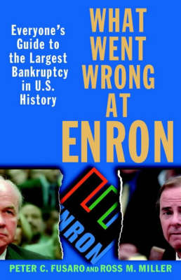 What Went Wrong at Enron: Everyone's Guide to the Largest Bankruptcy in U.S.History (Paperback)