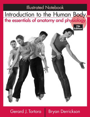 Cover Introduction to the Human Body: Illustrated Notebook: The Essentials of Anatomy and Physiology