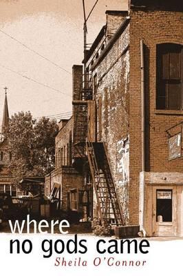Where No Gods Came - Sweetwater Fiction: Originals (Paperback)