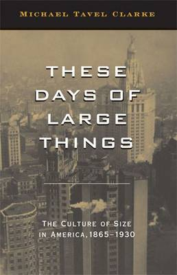 THESE DAYS OF LARGE THINGS (Hardback)