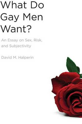 What Do Gay Men Want?: An Essay on Sex, Risk, and Subjectivity (Hardback)