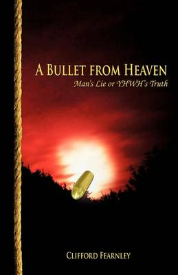 A Bullet from Heaven (Paperback)