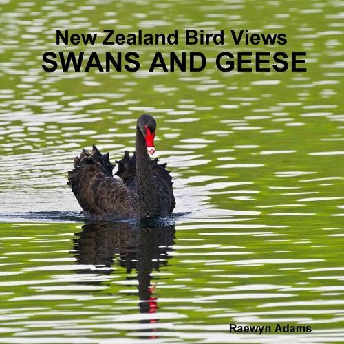 New Zealand Bird Views: Swans and Geese (Paperback)
