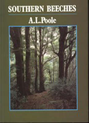 Southern Beeches (Paperback)