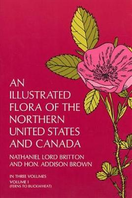 An Illustrated Flora of the Northern United States and Canada: v. 1 (Paperback)
