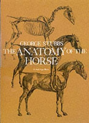 The Anatomy of the Horse - Dover Anatomy for Artists (Paperback)