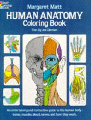 Human Anatomy - Dover Children's Science Books (Paperback)