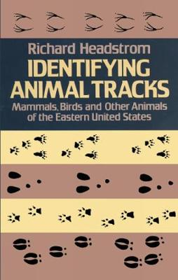 Identifying Animal Tracks: Mammals, Birds, and Other Animals of the Eastern United States: Mammals, Birds, and Other Animals of the Eastern United States (Paperback)