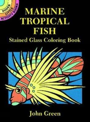 Marine Tropical Fish Stained Glass Coloring Book - Dover Stained Glass Coloring Book (Paperback)