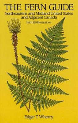 The Fern Guide: Northeastern and Midland United States and Adjacent Canada (Paperback)