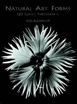 Natural Art Forms (Paperback)