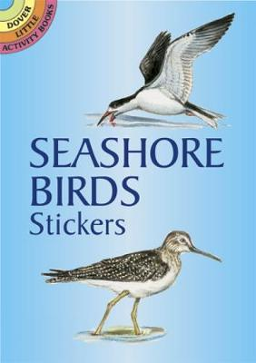 Seashore Bords Stickers - Dover Little Activity Books Stickers (Paperback)