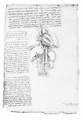 Leonardo's Anatomical Drawings - Dover Fine Art, History of Art (Paperback)