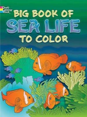 Big Book Of Sea Life To Color