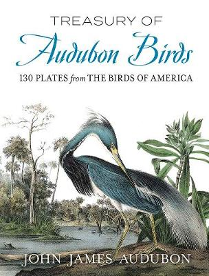 Treasury of Audubon Birds: 130 Plates from The Birds of America (Paperback)