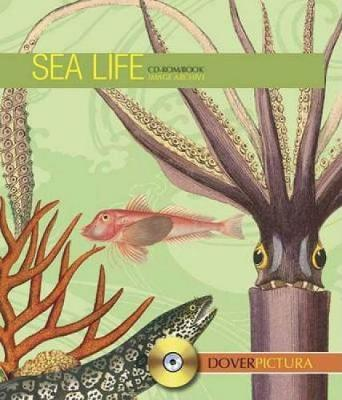 Sea Life - Dover Pictura Electronic Clip Art