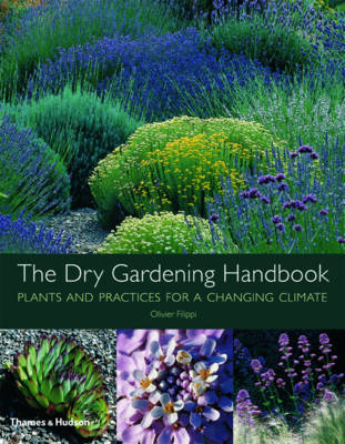 Dry Gardening: Plants and Practices for a Changing Climate (Hardback)