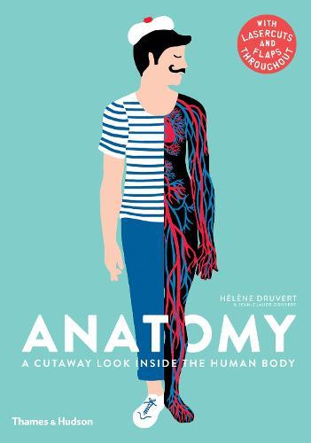 Anatomy: A Cutaway Look Inside the Human Body (Hardback)