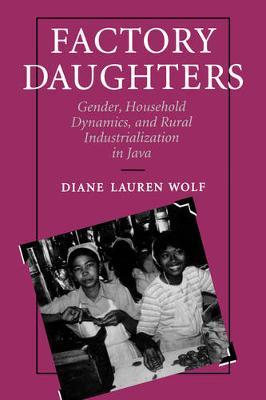 Factory Daughters: Gender, Household Dynamics, and Rural Industrialization in Java (Paperback)