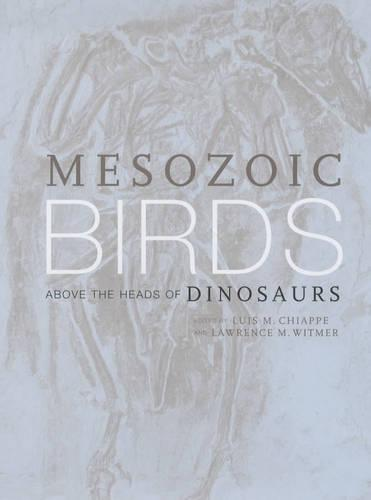 Mesozoic Birds: Above the Heads of Dinosaurs (Hardback)