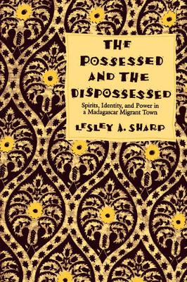 The Possessed and the Dispossessed: Spirits, Identity, and Power in a Madagascar Migrant Town - Comparative Studies of Health Systems and Medical Care 37 (Paperback)