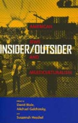 Insider/Outsider: American Jews and Multiculturalism (Paperback)