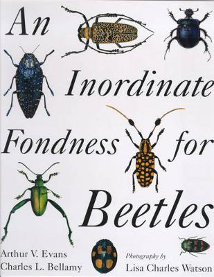 An Inordinate Fondness for Beetles (Paperback)