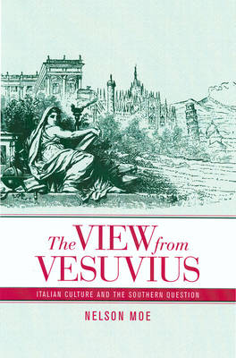 The View from Vesuvius: Italian Culture and the Southern Question - Studies on the History of Society & Culture 46 (Hardback)