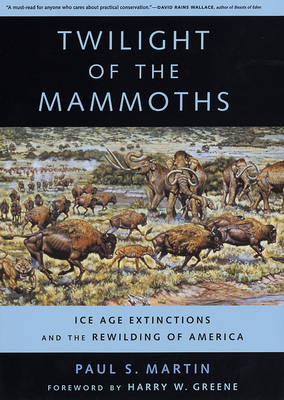 Twilight of the Mammoths: Ice Age Extinctions and the Rewilding of America - Organisms and Environments 8 (Hardback)