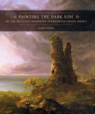Painting the Dark Side: Art and the Gothic Imagination in Nineteenth-Century America (Hardback)