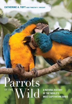 Parrots of the Wild: A Natural History of the World's Most Captivating Birds (Hardback)