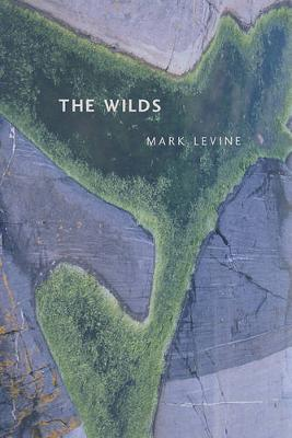 The Wilds - New California Poetry 17 (Paperback)