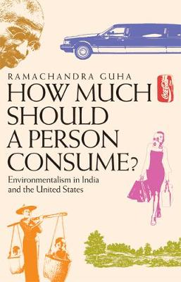 How Much Should a Person Consume?: Environmentalism in India and the United States (Paperback)