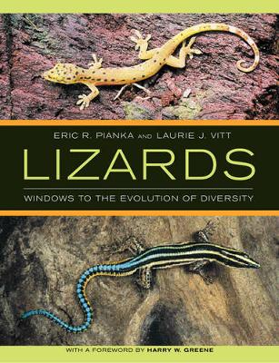 Lizards: Windows to the Evolution of Diversity - Organisms and Environments 5 (Paperback)