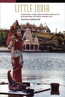 Little India: Diaspora, Time, and Ethnolinguistic Belonging in Hindu Mauritius (Paperback)