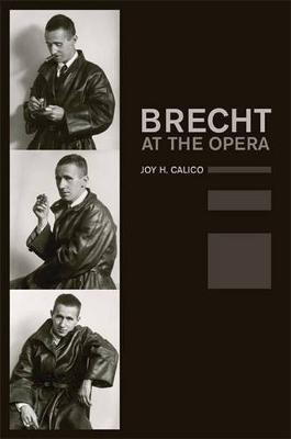 Brecht at the Opera - California Studies in 20th-Century Music 9 (Hardback)