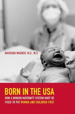 Born in the USA: How a Broken Maternity System Must Be Fixed to Put Women and Children First (Paperback)