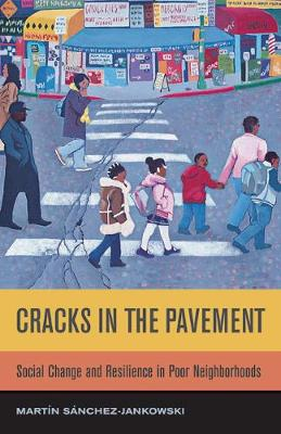 Cracks in the Pavement: Social Change and Resilience in Poor Neighborhoods (Paperback)