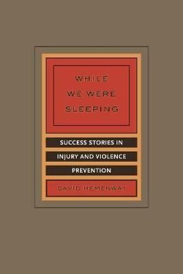 While We Were Sleeping: Success Stories in Injury and Violence Prevention (Paperback)