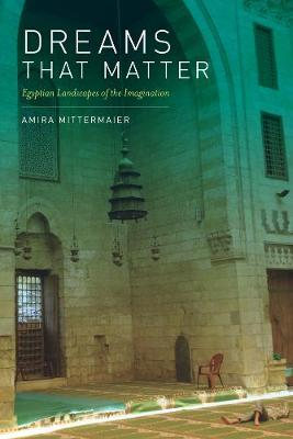 Dreams That Matter: Egyptian Landscapes of the Imagination (Paperback)