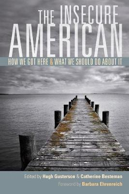 The Insecure American: How We Got Here and What We Should Do About It (Paperback)